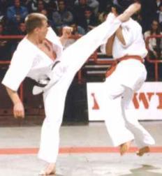 Karaté et Taekwondo quelle différence ?