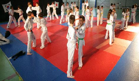 demo-taekwondo-2008