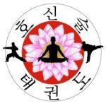 hoshinsoul-taekwondo-club-chamalieres