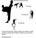 usb-hoshinsoul-taekwondo