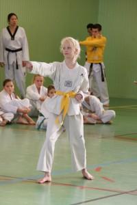 taekwondo-technique-poomse-feminin-herault-beziers-16.jpg