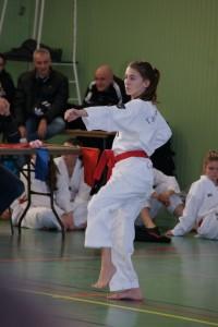 taekwondo-technique-poomse-feminin-herault-beziers-18.jpg