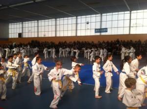 competition-taekwondo-mudo-challengers-5