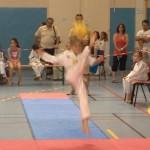 taekwondo-aquitaine-gironde-competition-enfant-25