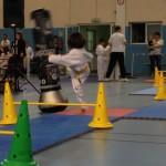taekwondo-aquitaine-gironde-competition-enfant-9