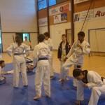 2eme-coupe-mainho-beziers-taekwondo-2014-1