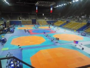 championnat-france-combat-taekwondo-2015-marseille-9
