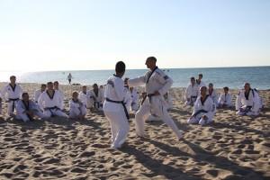 stage-ete-taekwondo-2015-leewonsik-10