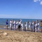 stage-ete-taekwondo-2015-leewonsik-2