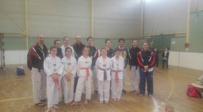 championnat-region-aquitaine-taekwondo-technique-2016