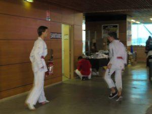 open-aquitaine-boe-2016-taekwondo-7
