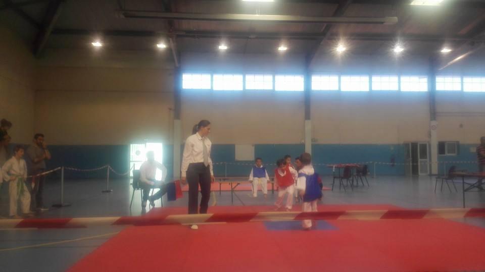 taekwondo-enfant-2016-st-andre-cubzac-2