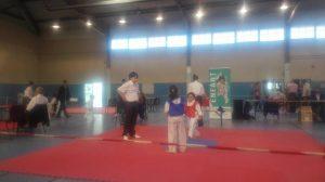 taekwondo-enfant-2016-st-andre-cubzac-4