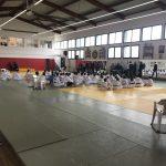 Championnat-criterium-poomsae-2018-anglet-taekwondo-6