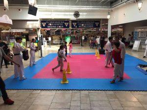 animation-taekwondo-leclerc-libourne