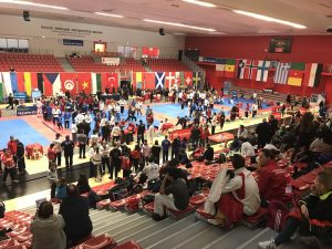 Open International Taekwondo Technique de Lille 2018