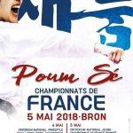 championnat-france-taekwondo-2018-poomsae-bron-0
