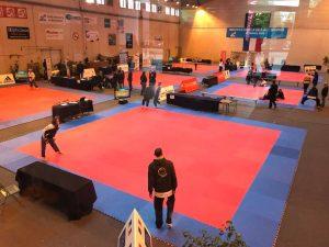 championnat-france-taekwondo-2018-poomsae-bron-1