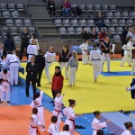france-taekwondo-technique-2014-aquitaine-13