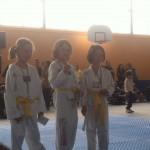 competition-taekwondo-mudo-challengers-11