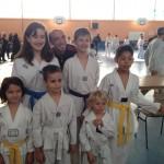 competition-taekwondo-mudo-challengers-13