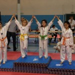 taekwondo-aquitaine-gironde-competition-enfant-32