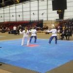 technique-taekwondo-paris-2015-2