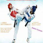 Championnat-regional-combat-taekwondo-2017