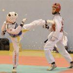 Clement-taekwondo-regional-combat-2017-bordeaux
