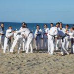 stage-ete-taekwondo-beziers-2017-16