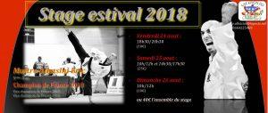 présentation-stage estival 2018