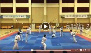 Démonstration de casses par une équipe Coréenne de Taekwondo